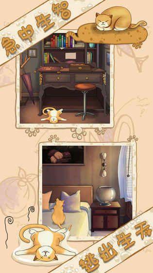 喵喵爱冒险手机游戏图片1