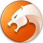 猎豹浏览器app版v4.96.2Android版-手机软件排行榜