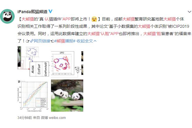 大熊猫认脸苹果版下载