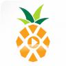 菠萝音乐网app