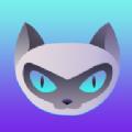 夜猫体育官网首页