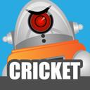 机器人板球-游戏中心下载