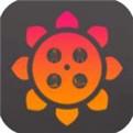 向日葵app最新应用