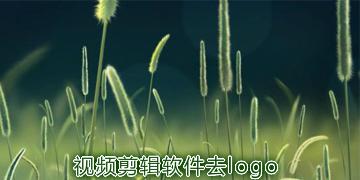 视频剪辑软件去logo