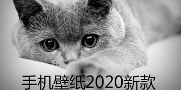 手机壁纸2020新款