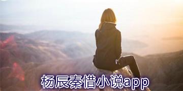 杨辰秦惜小说app