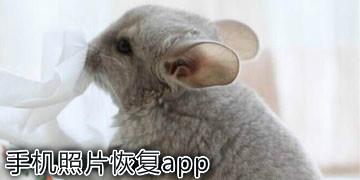 手机照片恢复app