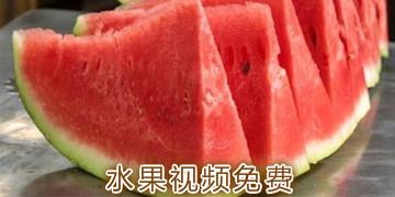 水果视频免费