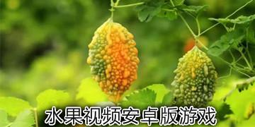 水果视频安卓版游戏