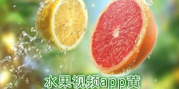 水果视频app黄版