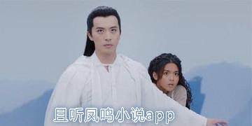 且听凤鸣小说app
