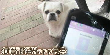 狗语翻译器app免费