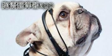 狗语翻译器app