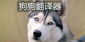 狗狗翻译器