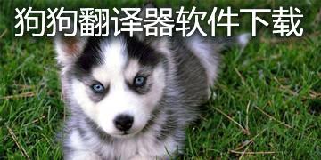 狗狗翻译器软件下载