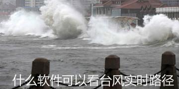 什么软件可以看台风实时路径