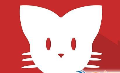 猫咪app官网下载
