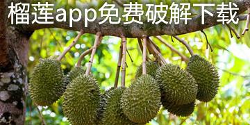 榴莲app免费下载