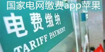 国家电网缴费app苹果