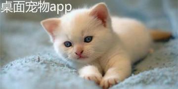 桌面宠物app
