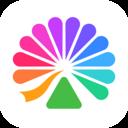 大麦安卓app