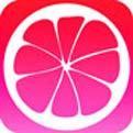 蜜柚appapi免费