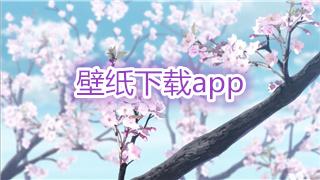 壁纸下载app