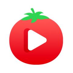 番茄视频最新版