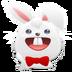 兔兔助手安装