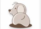 影视狗app下载安装